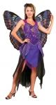 Большая фиолетовая бабочка