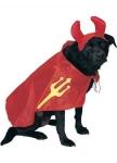 Дьявол Dog