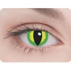 Линзы Кошачий глаз желто-зеленые