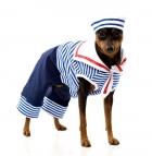 Матрос Dog