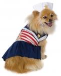 Морячка Dog