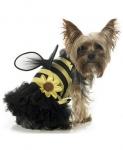 Пчелка Dog