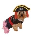 Пират Dog