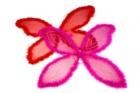 Пурпурные крылья бабочки